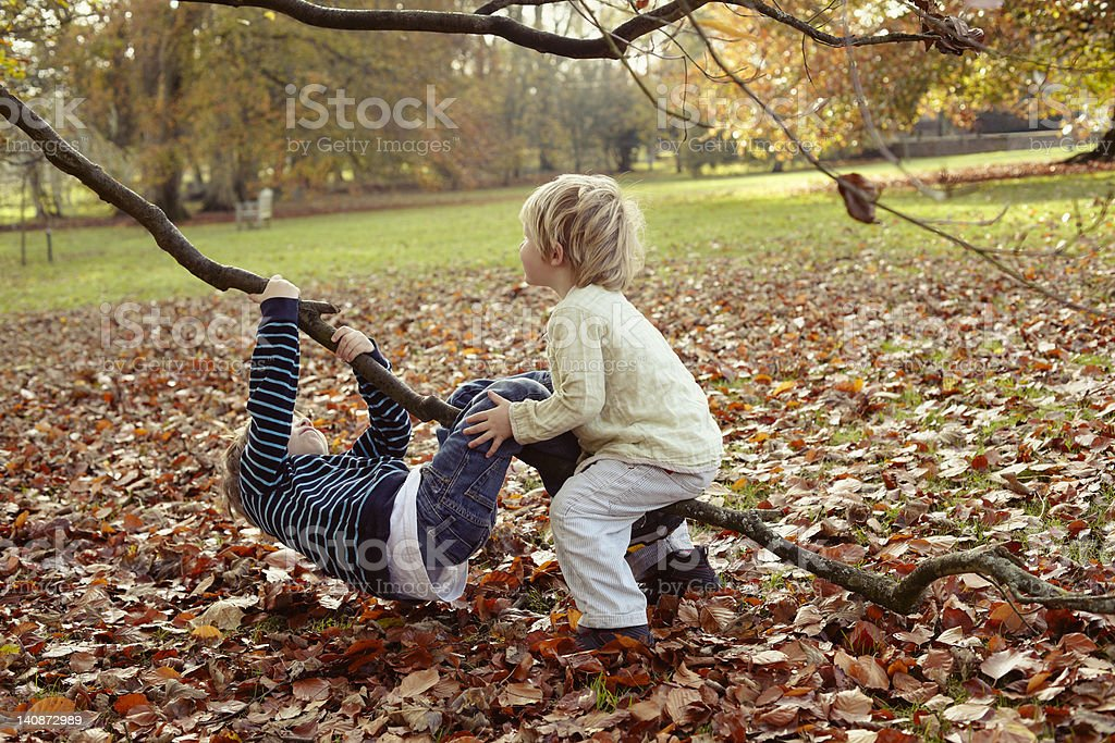 Boys playing on tree outdoors stock photo