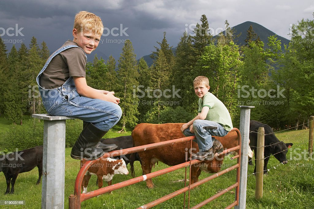 Boys sitting on fence stock photo