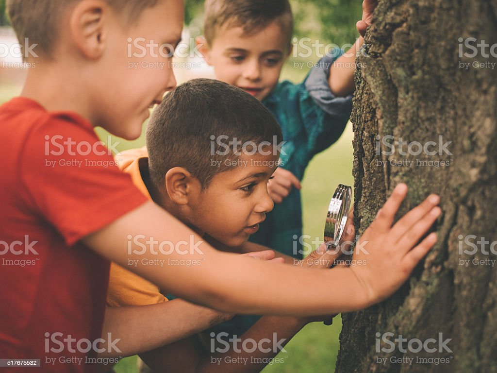 Boys studying a tree trunk with a magnifying glass stock photo