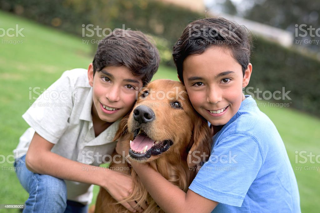 Boys with a beautiful dog at the park stock photo