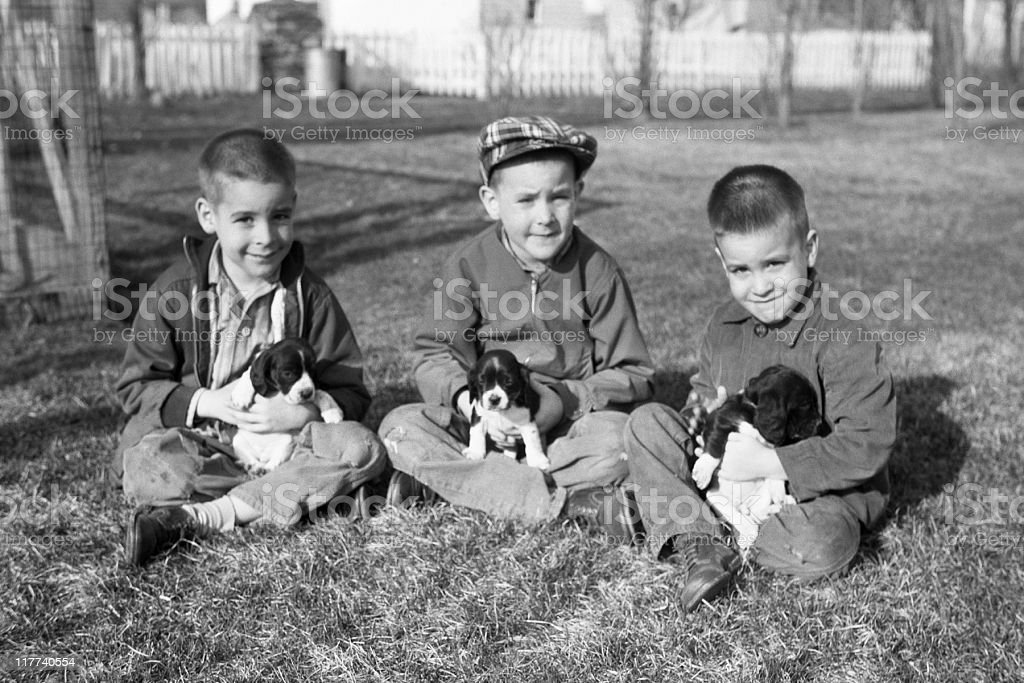 boys with puppies 1959, retro royalty-free stock photo