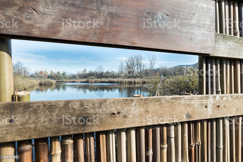 Brabbia marsh, province of Varese, Italy, long a naturalistic route stock photo