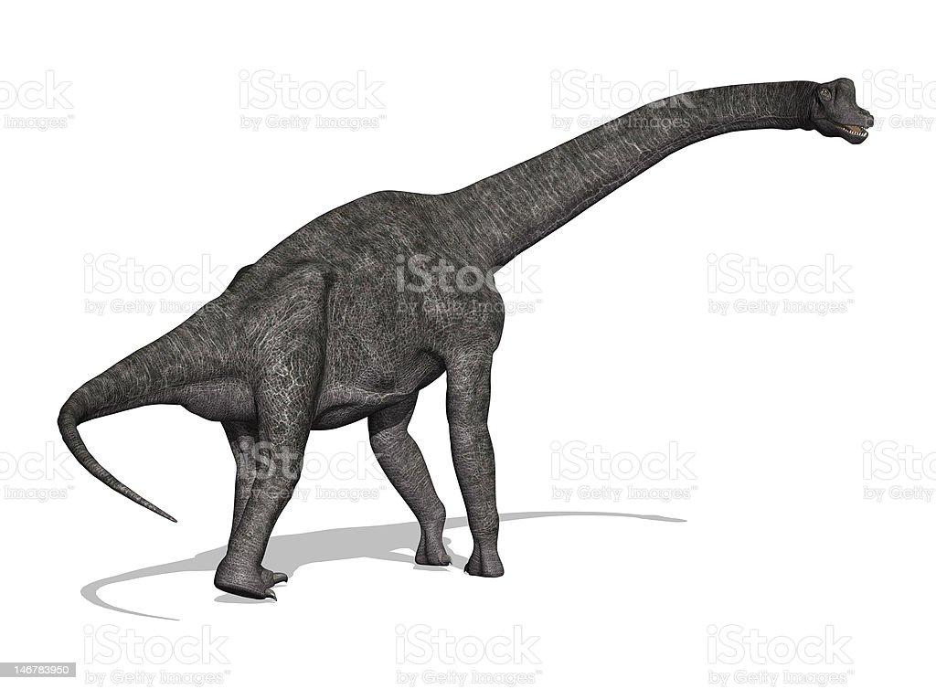 Brachiosaurus Dinosaur stock photo