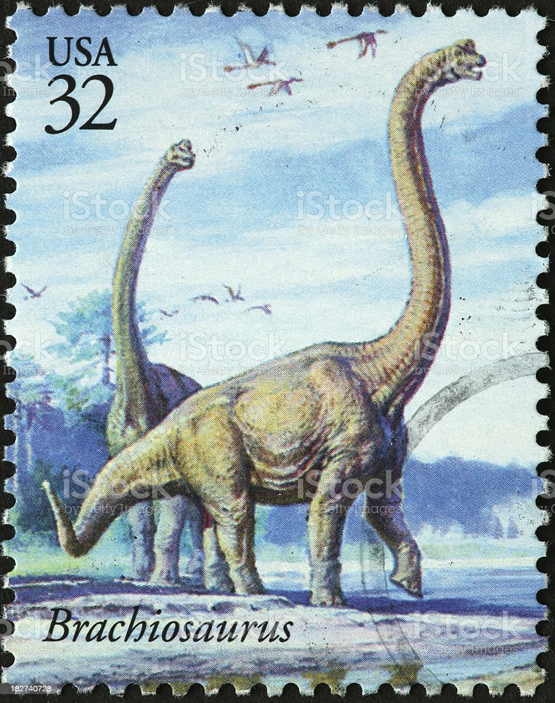 brachiosaurus dinosaurs stock photo