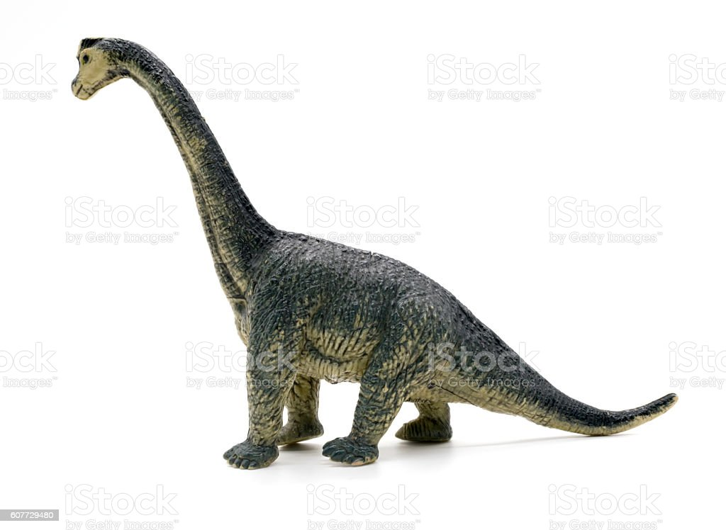 Brachiosaurus dinosaurs toy on white background stock photo