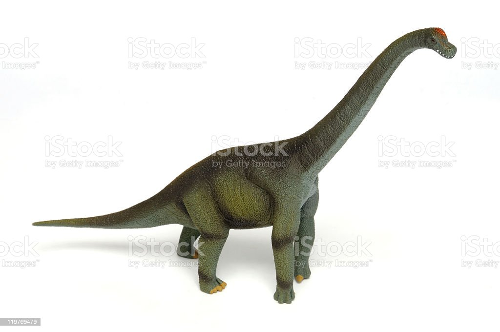 Brachiosaurus stock photo