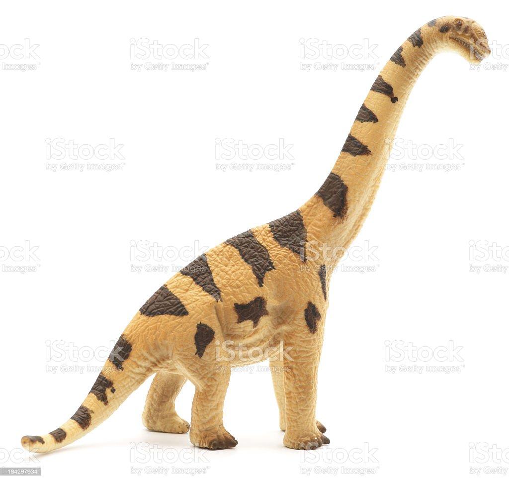 Brachiosaurus toy isolated on white stock photo