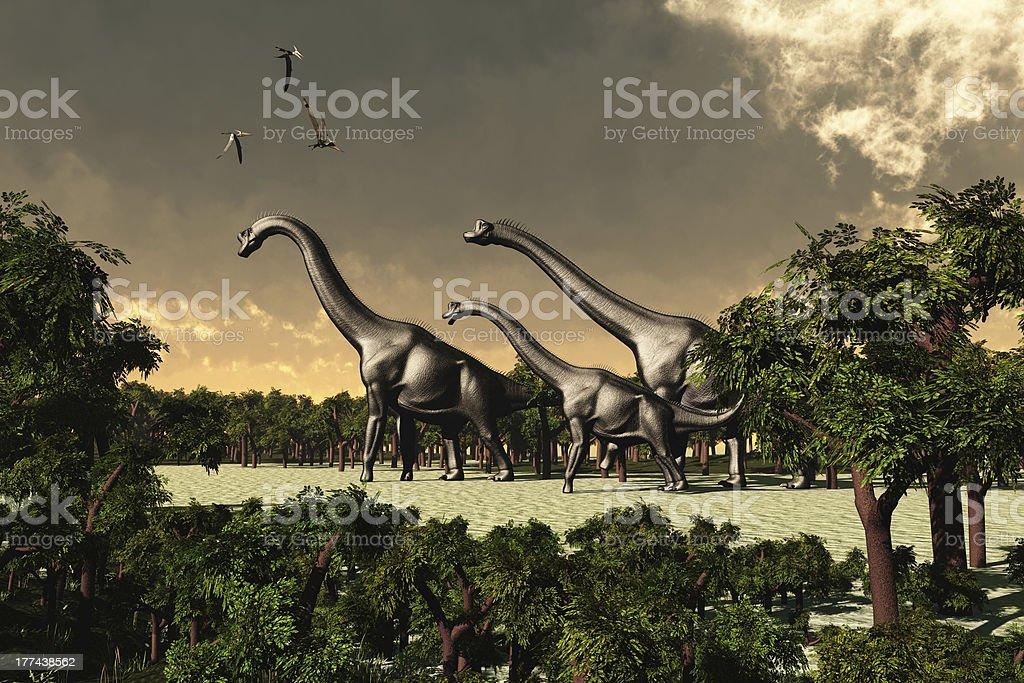 Brachiosaurus Walk stock photo
