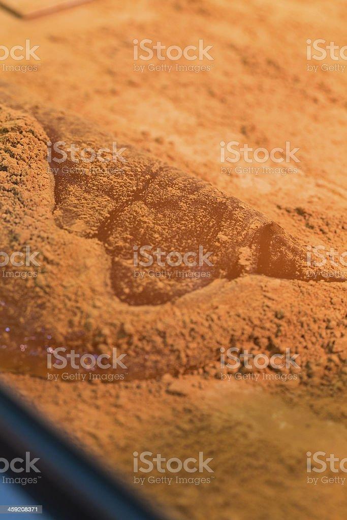 Bracken-Starch on Slab of Mochi stock photo