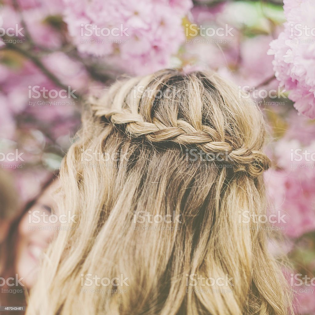Braid in summer spring bloom stock photo