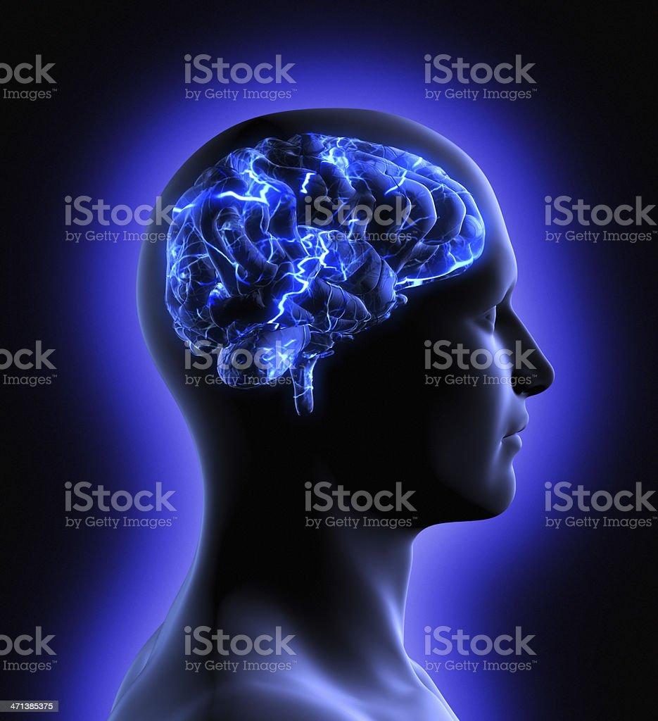 Brain Activity royalty-free stock photo