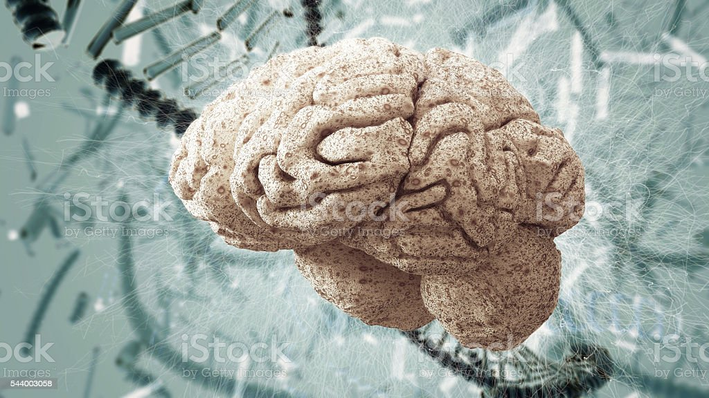 brain and DNA strands stock photo