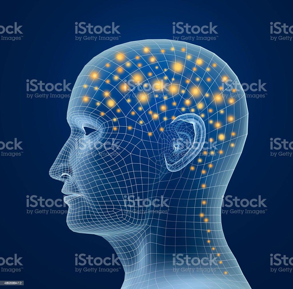 Brain, and pulses. process of human thinking stock photo