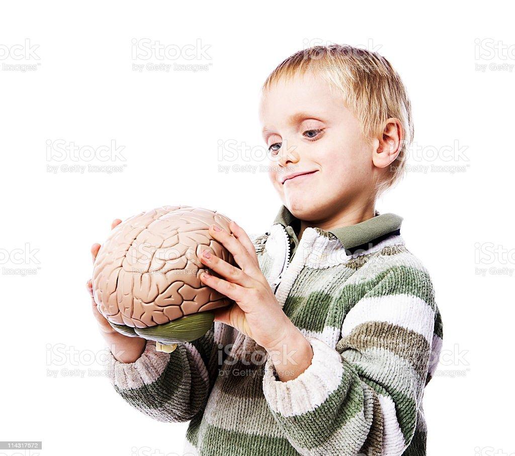Brain boy royalty-free stock photo