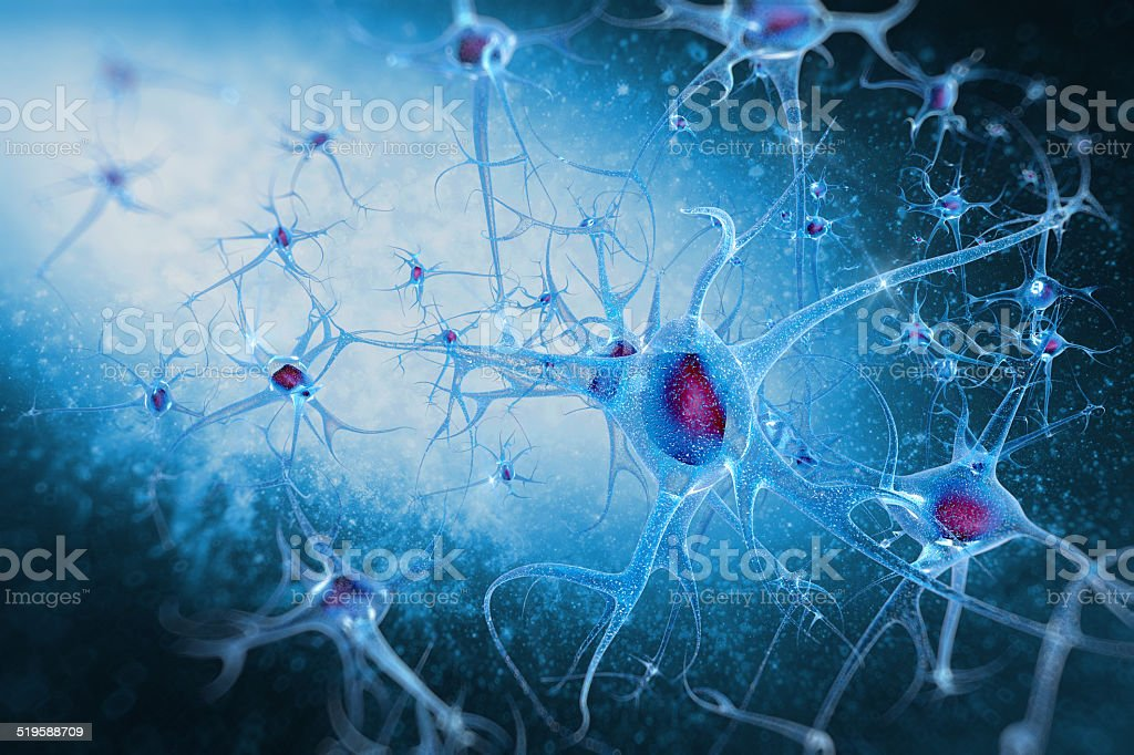 brain cells neurons stock photo