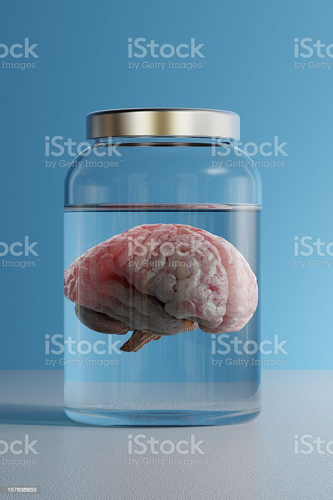 Brain in a Jar stock photo