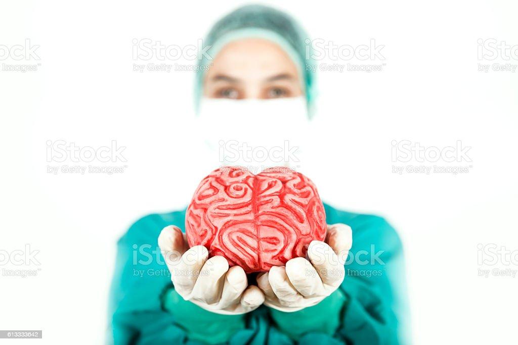 Brain in Hand stock photo