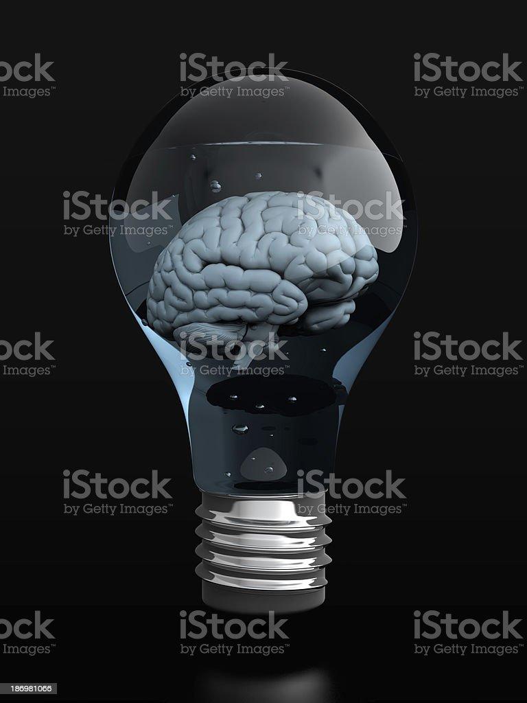 Brain in light bulb stock photo
