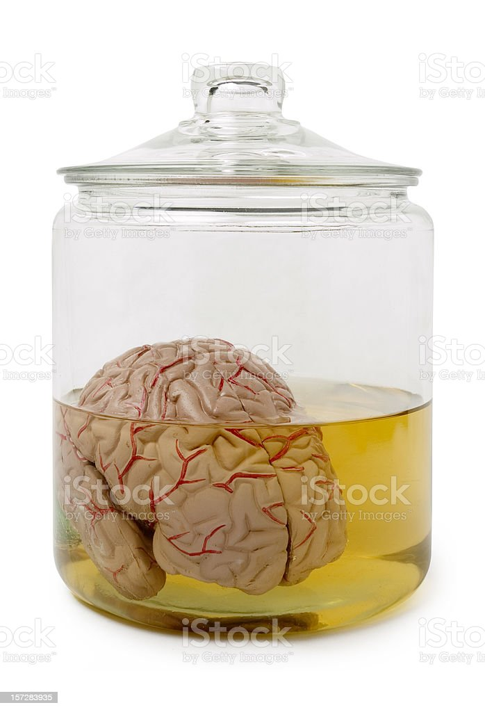 Brain Jar stock photo