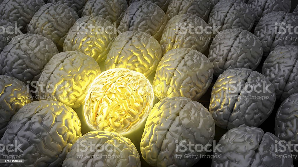 Brain of a genius royalty-free stock photo