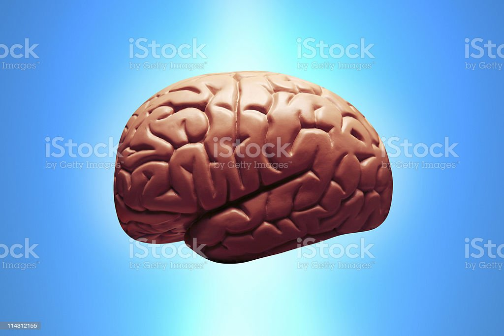 Brain on sky blue royalty-free stock photo