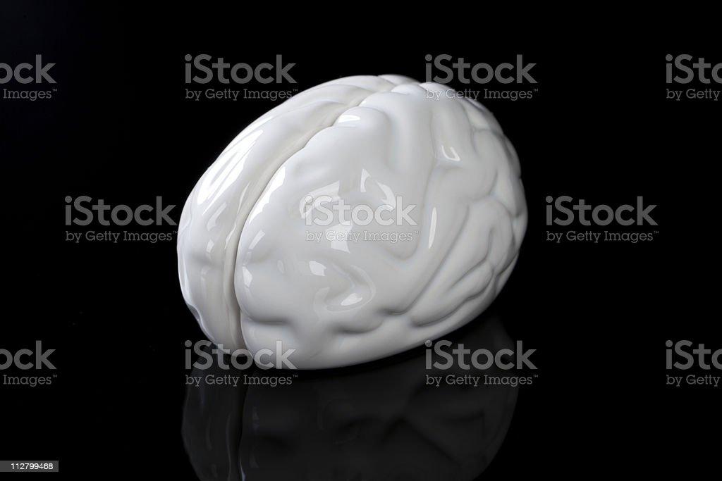 Brain. royalty-free stock photo