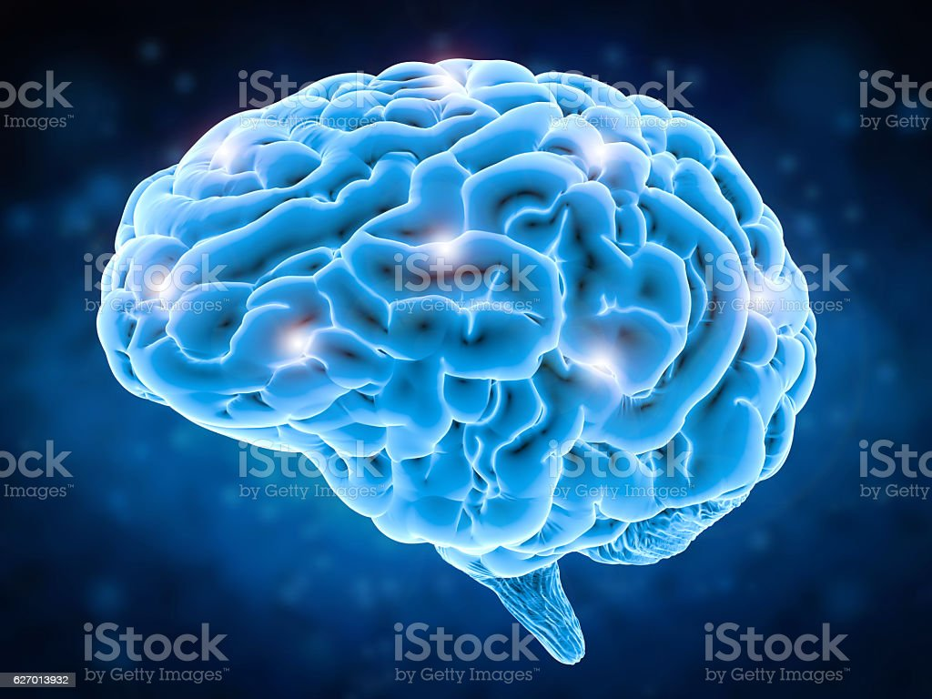 brain power concept stock photo