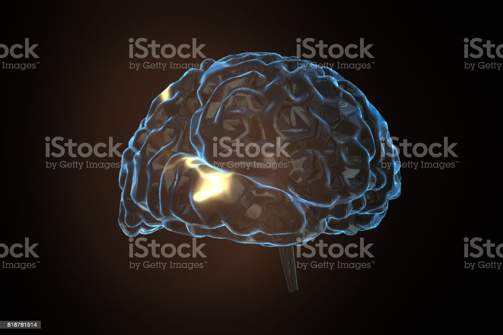 brain power concept with 3d rendering shiny human brain stock photo