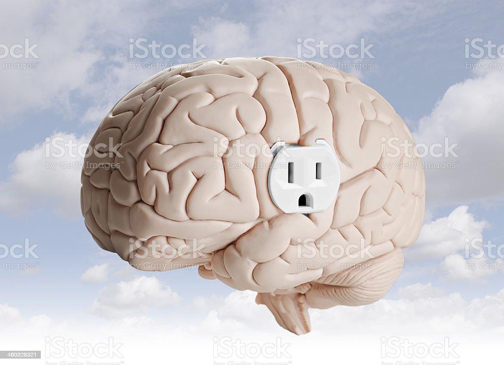 Brain power royalty-free stock photo