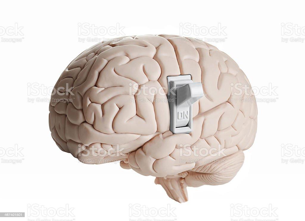 Brain power stock photo