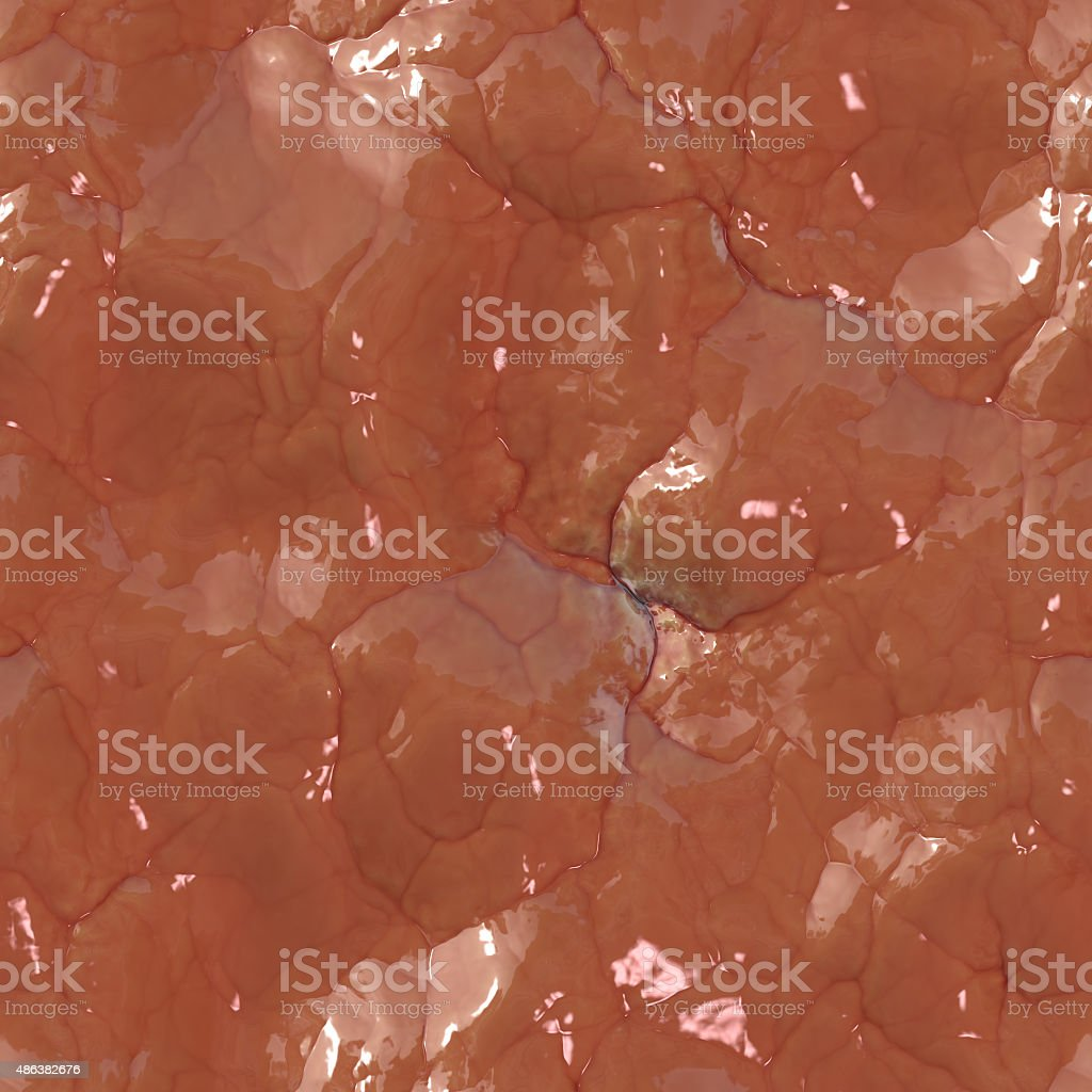 Brain Veins - Texture stock photo