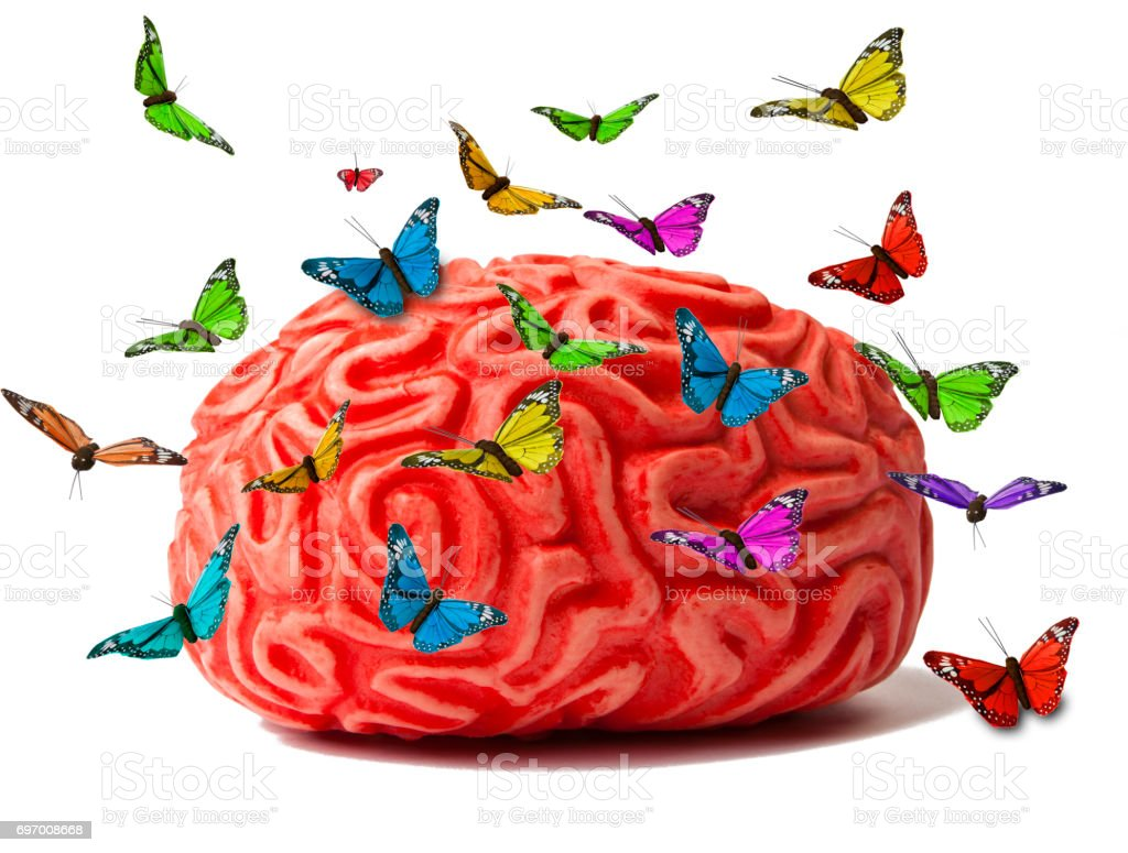 Brain with Butterflies stock photo