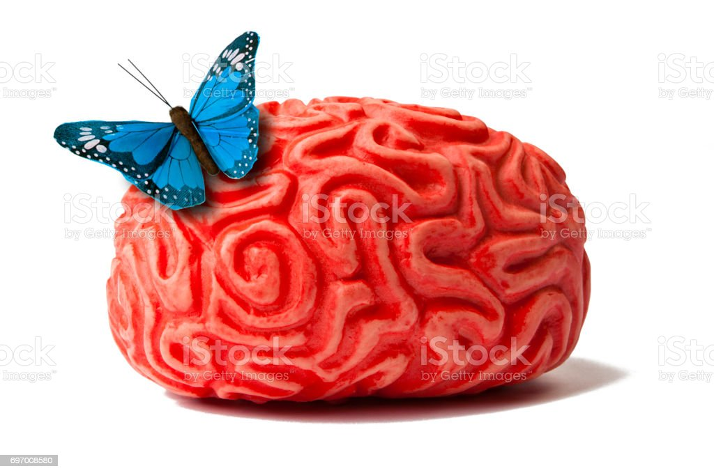 Brain with Butterfly stock photo