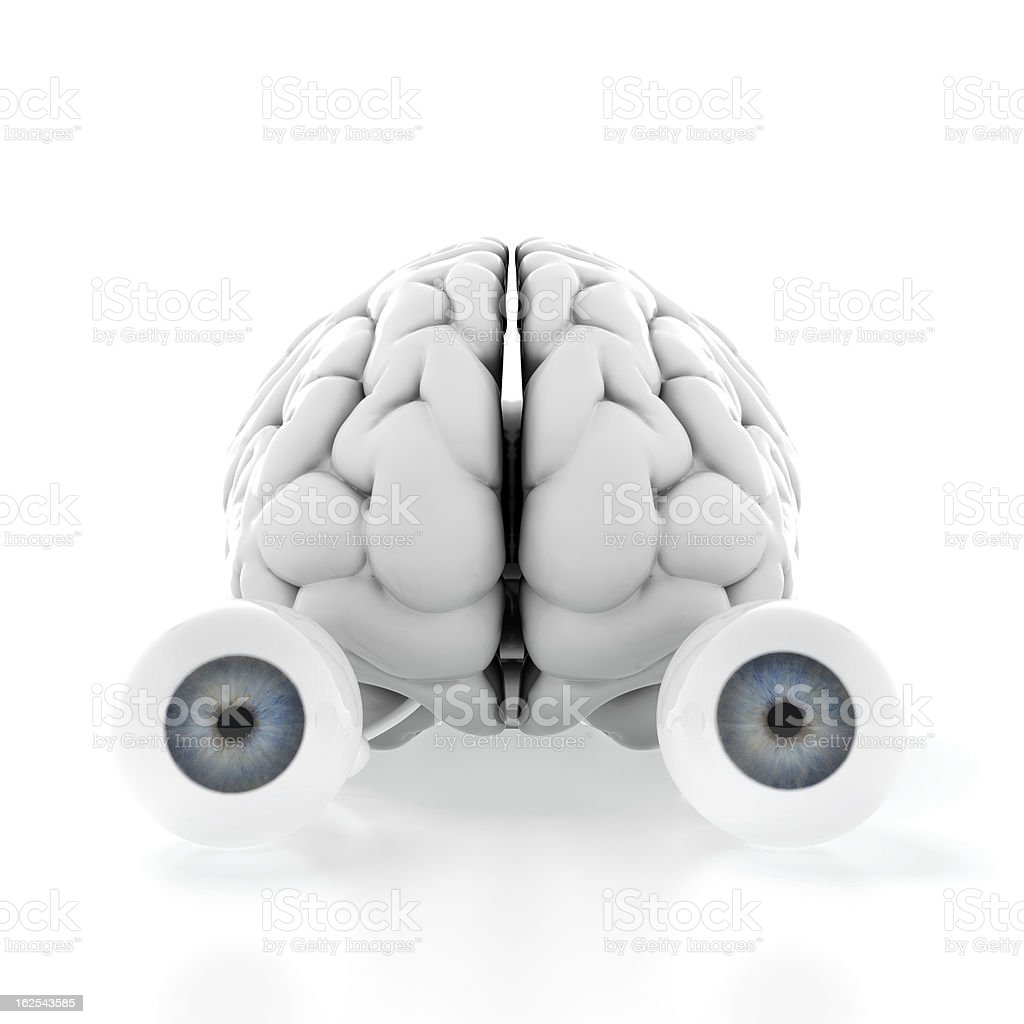 Brain with eyes stock photo