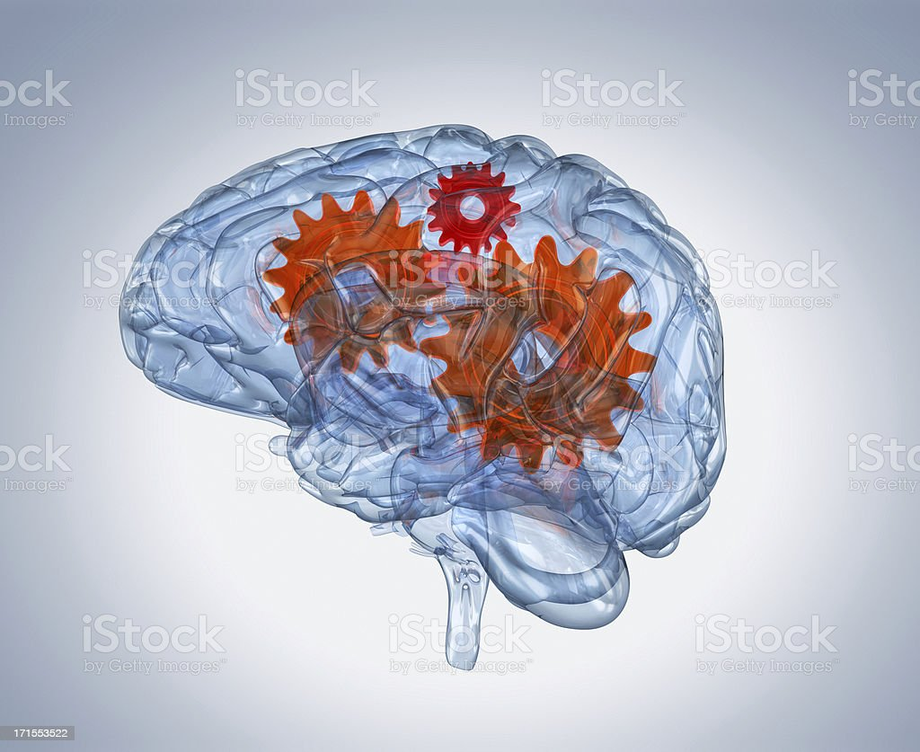 Brain with gears inside stock photo