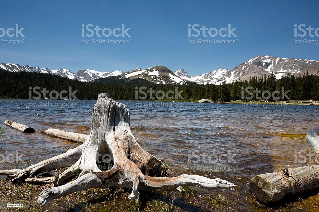 Brainard Lake, Colorado, with tree stump in foreground stock photo