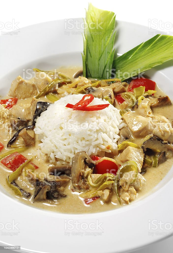 Braised Chicken Slice with Rice Heap royalty-free stock photo
