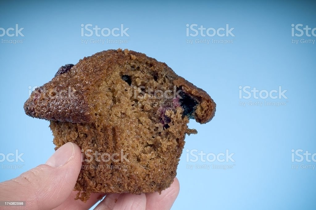 Bran and Blueberry Muffin stock photo