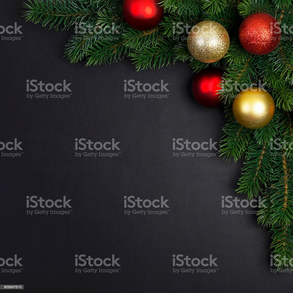 branch of a Christmas tree stock photo
