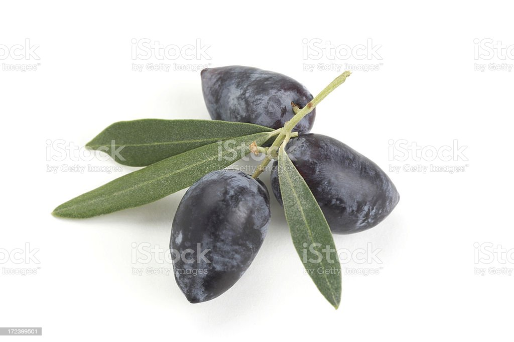 Branch of black olives royalty-free stock photo