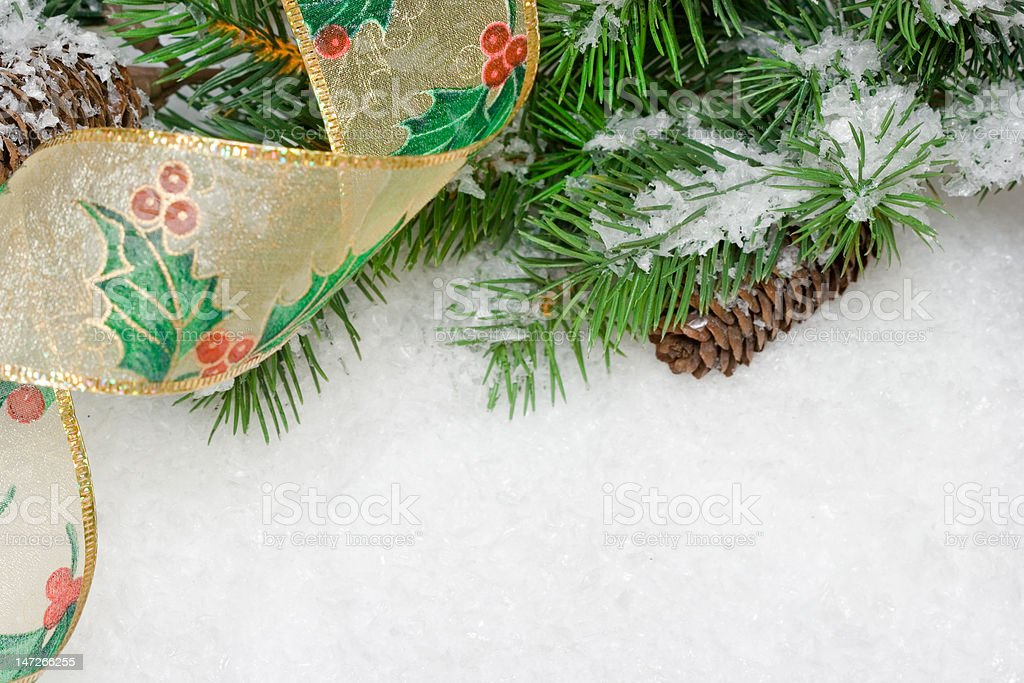 Ramo de Árvore de Natal na neve branca foto de stock royalty-free