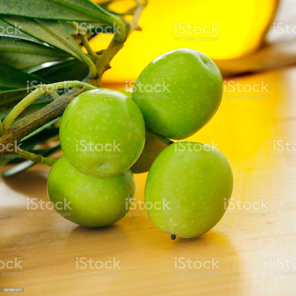 branch of olive tree and olive oil stock photo