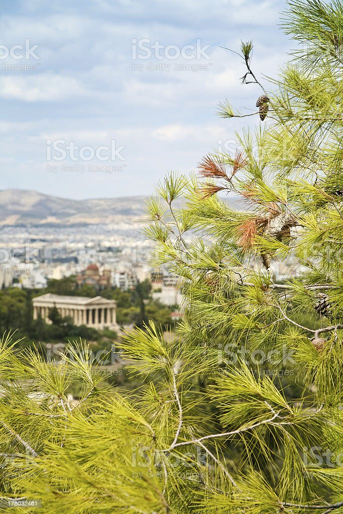 branch of pine with Athens on background royalty-free stock photo