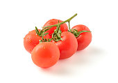 branch of ripe tomatoes on a white background