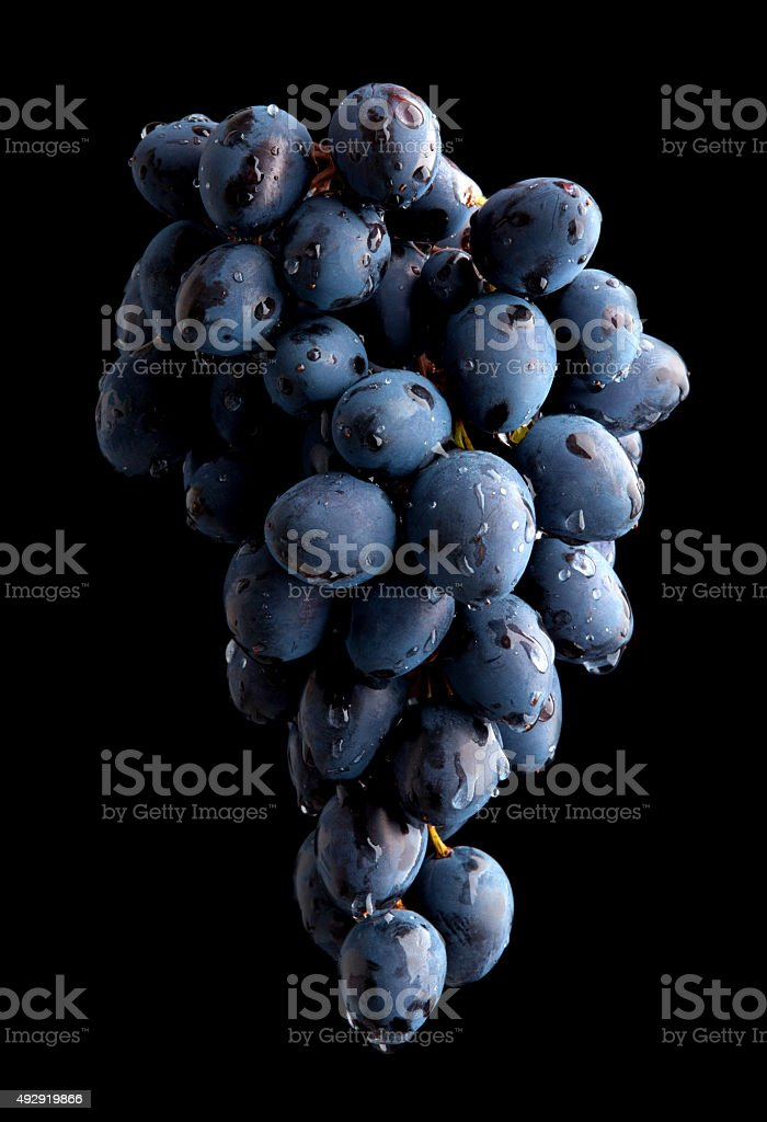 Branch of wet grape over black background stock photo