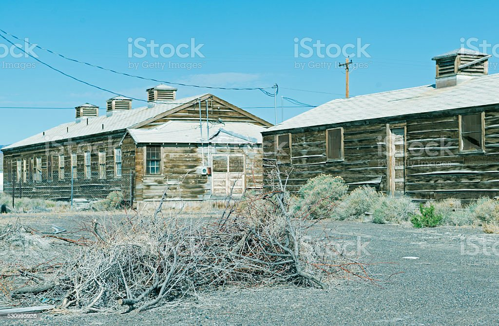 Branches gathered at old air force base in Wendover UT stock photo