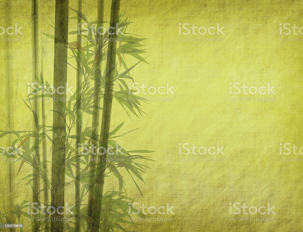branches of a bamboo on paper background royalty-free stock photo