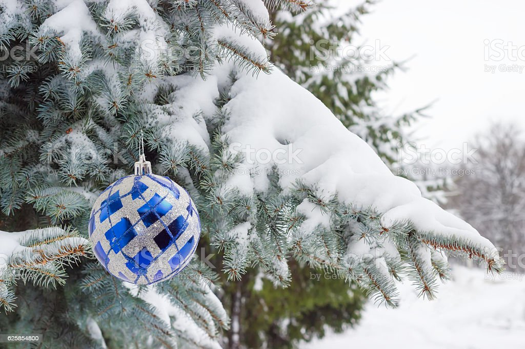 Branches of blue spruce covered with snow with Christmas ornamen stock photo