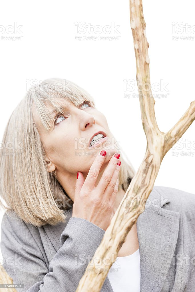 Branching Out stock photo