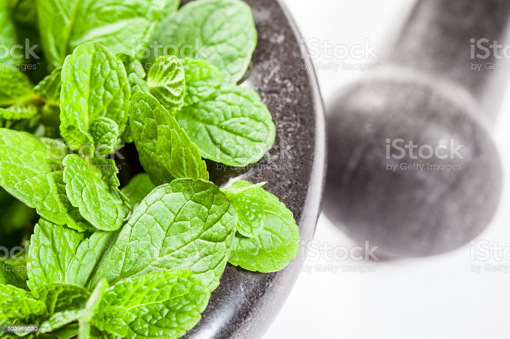Brandy mint in a mortar on white background stock photo